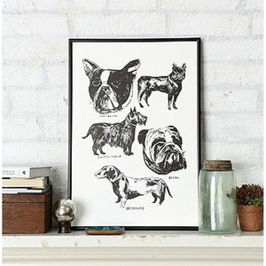 PATTULLO DOGS POSTER  by Alice pattullo